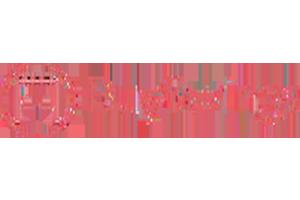 Buyswings logo